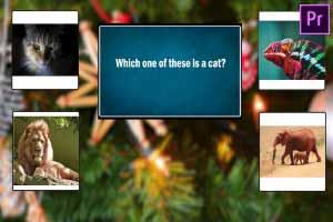 Quiz Game Show #4