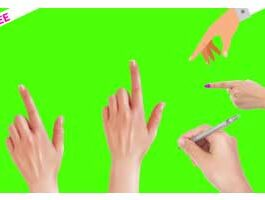 Green Screen Hand Animation – Pack Of 7
