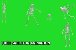 Skeleton Green Screen Animation